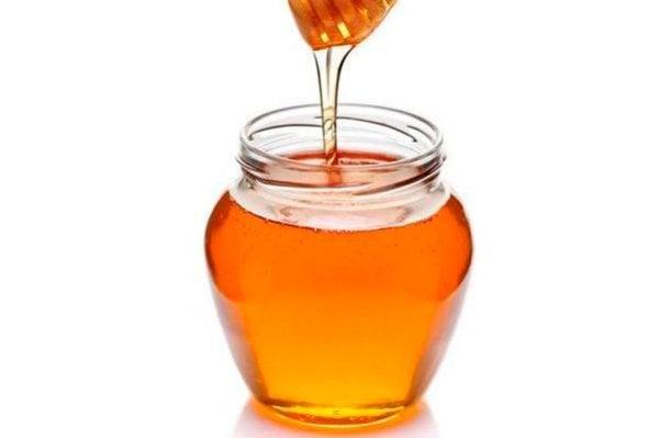 Мёд (гречишный)